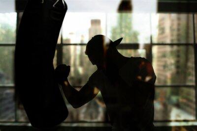 Quadro Boxer hits a punching bag against the window, training