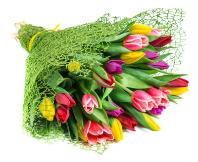 Quadro Buquê de 25 tulipas coloridas, isolado no fundo branco