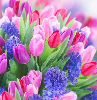 Quadro Buquet, azul, jacinto, tulips