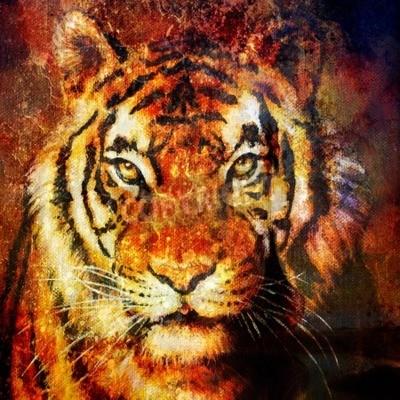 Quadro Cabeça de tigre, cor abstrata Fundo, colagem de computador, Contato com os olhos