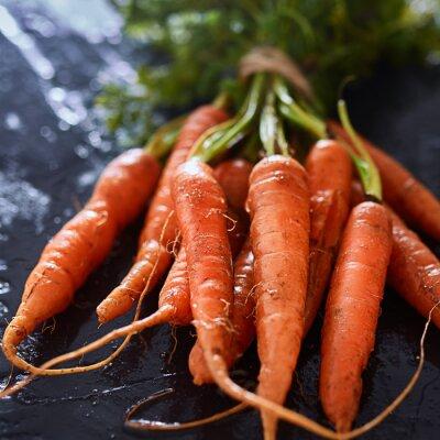Quadro Cacho, recém-colhido, cenouras, fim, cima