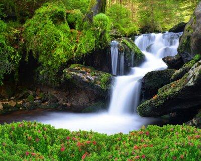 Quadro Cachoeira no parque nacional Sumava-República Checa
