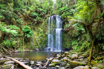 Quadro cachoeira Tasmânia
