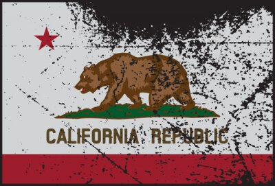 Quadro California Flag Grunged