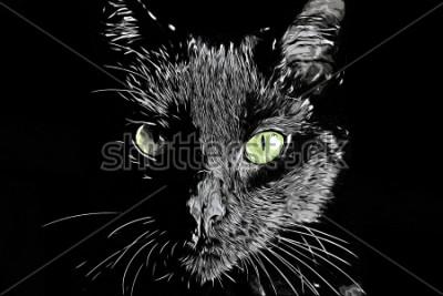 Quadro Cara de gato raster preto e branco realista desenhados à mão scratchboard estilo imagem