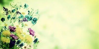 Quadro Cartão do vintage com flores selvagens
