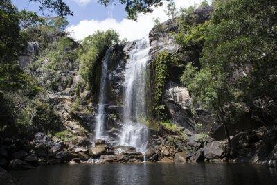 Quadro Cascada grande com água abundante no meio de uma foresta. Cooktown, Queensland, Austrália