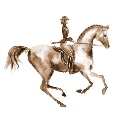 Quadro Cavaleiro da aguarela e cavalo do adestramento no branco. Esporte equestre. Entregue o fundo eqüino da ilustração da pintura.