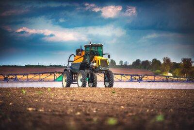 Quadro Ceifeira-debulhadora agrícola máquina de colheita campo de trigo maduro dourado