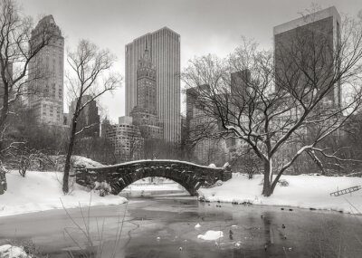 Quadro Cena do inverno em Manhattan: o Pond, Gapstow Bridge e Manhatta