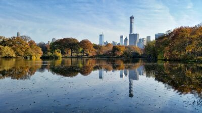Quadro Central, parque, queda, paisagem, reflexão, novo, york, cidade