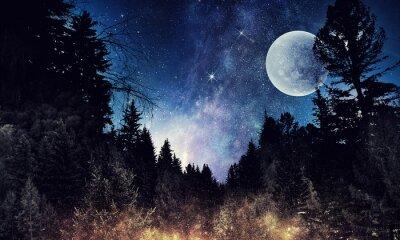 Quadro Céu estrelado e lua. Meios mistos