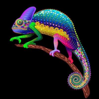 Quadro Chameleon Fantasy Rainbow Colors