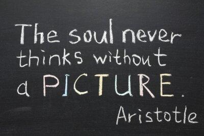 Quadro Citação Aristóteles
