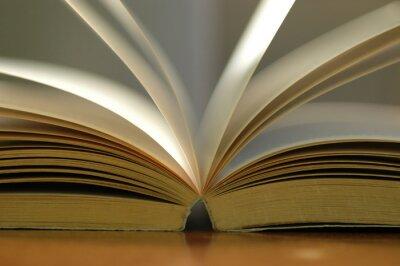 Quadro Close up livro aberto