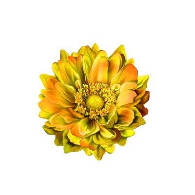 Quadro Colorful Mona Lisa flower, Spring bloom