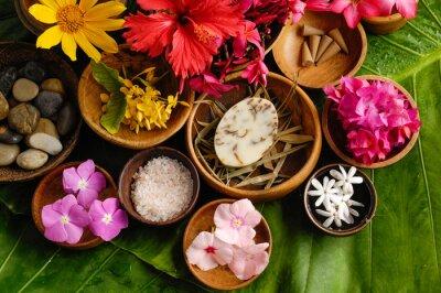 Quadro Conjunto de Spa flor tropical