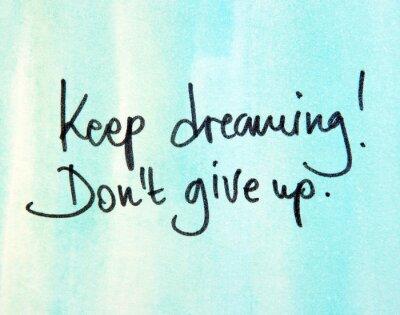 Quadro continuar sonhando don t desistir