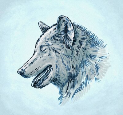 Quadro Cor gravar tinta desenhar lobo