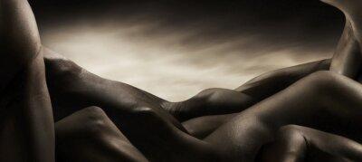 Quadro corpi di nudo artistico