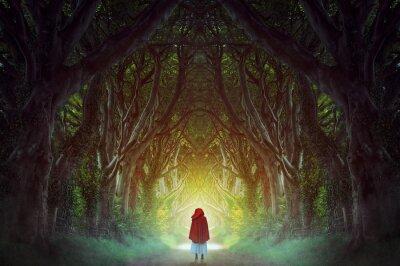 Quadro Dark forest road