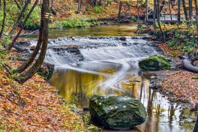 Quadro Deer Lick Creek Cachoeira