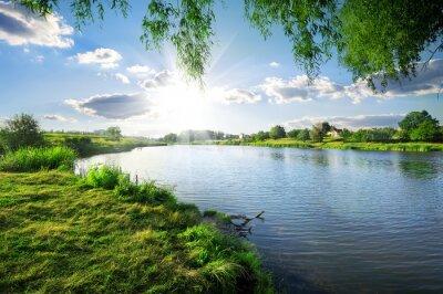 Quadro Dia em um rio