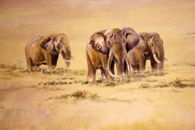 Quadro Elefante africano, a África do Sul