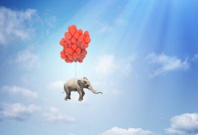 Quadro Elefante com balões
