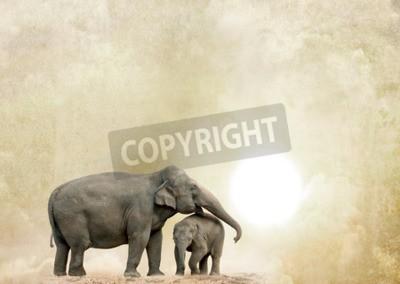 Quadro Elefantes, grunge, fundo