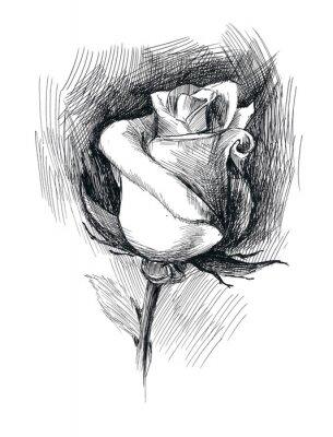 Quadro esboço flor