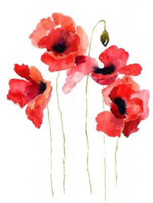 Quadro Estilizado Poppy flores ilustração