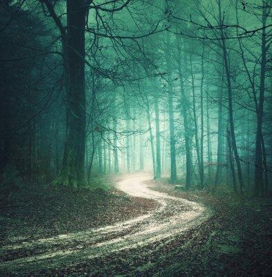Quadro Estrada de floresta do outono da cor mágica. Colored árvore sonhadora bllue verde campo floresta nevoenta com enrolamento fundo da estrada. Fantasia coloridos da floresta. Efeito de filtro de cor usad