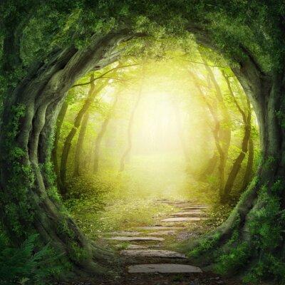 Quadro Estrada na floresta escura