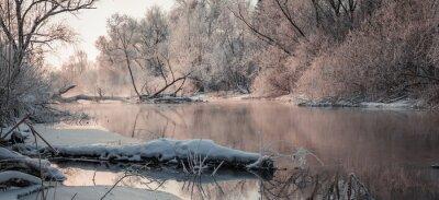 Quadro Fantástica paisagem de inverno