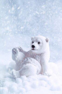 Quadro Figura Urso Polar