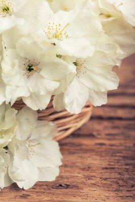 Quadro Fim, cima, branca, florescendo, cereja, cesta, vindima, estilo