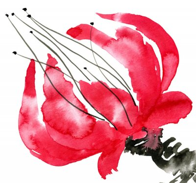 Quadro Flor vermelha abstrata. Desenho de papoula. Ilustração da aguarela e da tinta no sumi-e do estilo, u-sin. Pintura tradicional oriental. Isolado no fundo branco.