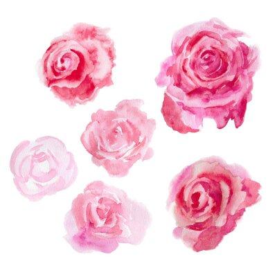 Quadro Flores da aguarela. rosas