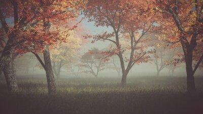 Quadro Floresta do outono na névoa.