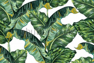 Quadro Folhas de palmeira tropical, selva folha sem costura vetor floral de fundo