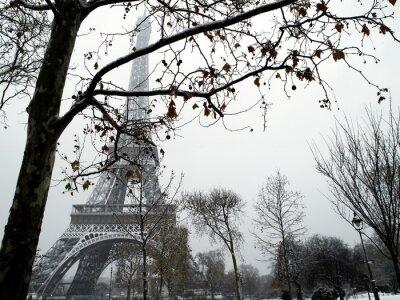 Quadro França Paris Trocadero sob a neve