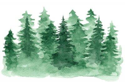 Quadro Fundo bonito da aguarela com a floresta conífera verde. Misteriosa ilustração de pinheiro ou abeto para o projeto de Natal de inverno, isolado no fundo branco