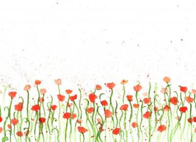 Quadro Fundo com as papoilas vermelhas da aguarela do desenho da mão no branco. Bandeira sem emenda com flores. Mão pintura cor cópia espaço fronteira.