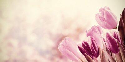 Quadro Fundo floral do vintage do feriado
