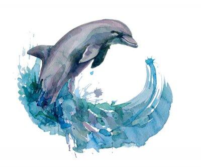 Quadro golfinho