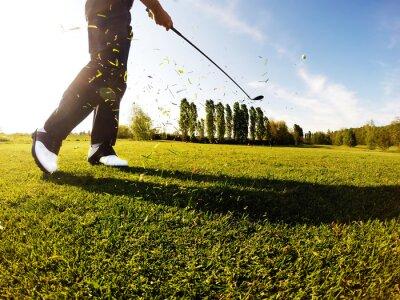 Quadro Golfista executa uma tacada de golfe do fairway.