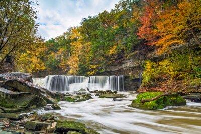 Quadro Great Falls com Grande Cor