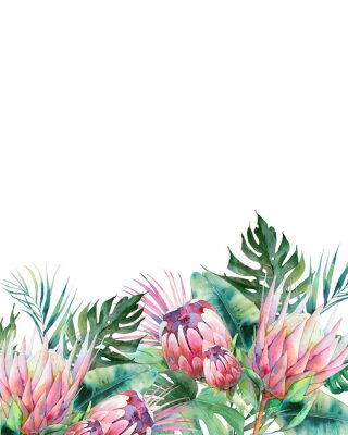 Quadro Hand drawn greeting card design with exotic leaves and protea flowers isolated on white background. Palm tree, banana leaves, mostera plants