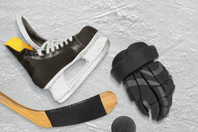 Quadro Hockey patins, vara, luvas e disco